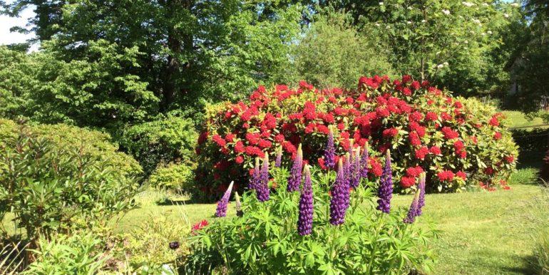 allerton house garden